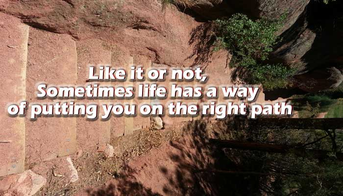life has a way of putting you on the right path