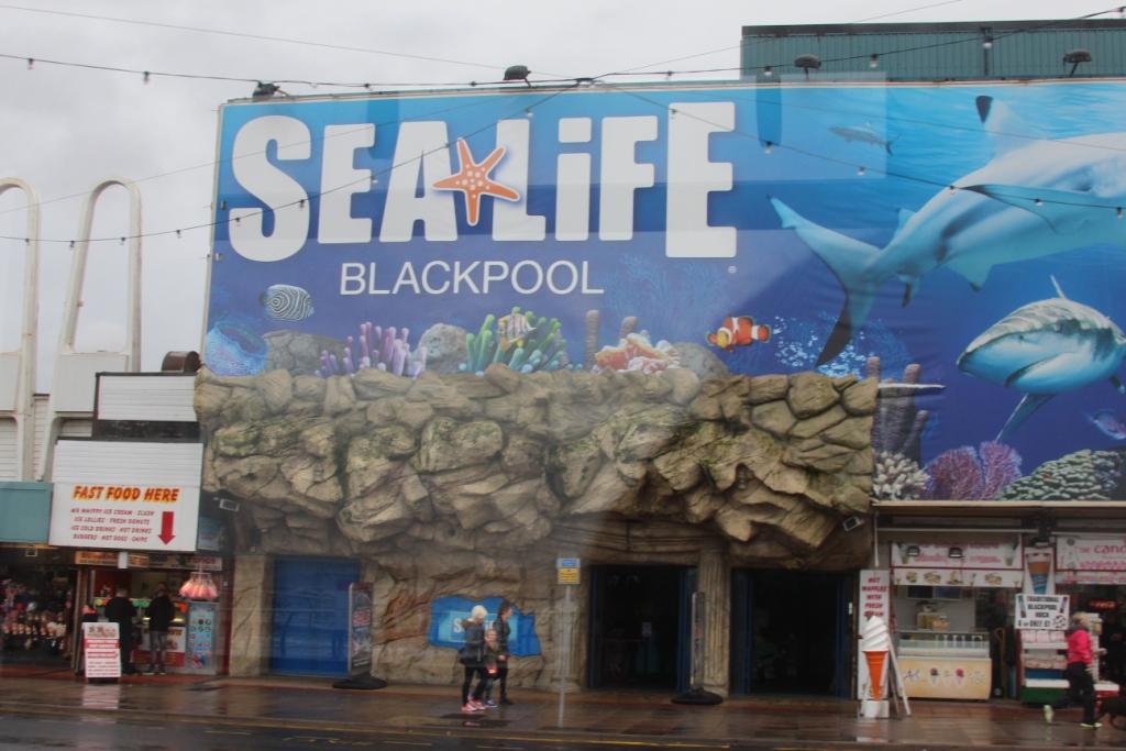 L'aquarium - Blackpool