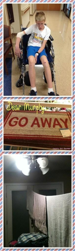 Dear Murphy... | Country Girl Gourmet