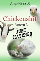 Chickenshit V.2 Just Hatched by Amy Stinnett