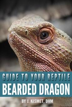 Bearded Dragon (fake book)
