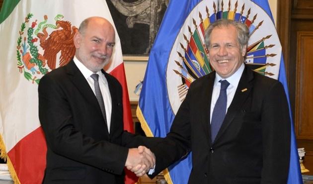 OEA y Venezuela: un paso adelante – Por Kenneth Ramírez