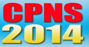 CPNS Indonesia