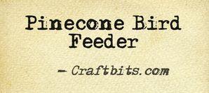 Pinecone Bird Feeder