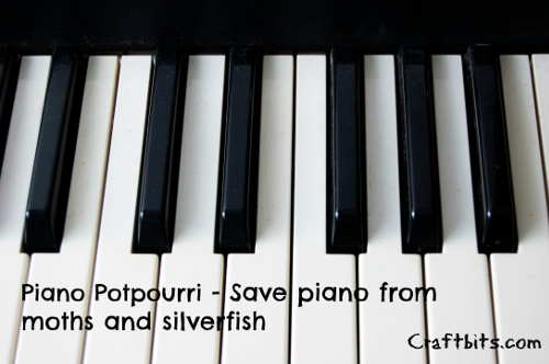 Piano Saver Potpourri