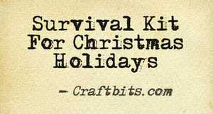 survival-kit-christmas-holidays