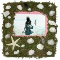 Seashell And Moss Picture Frame