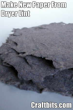 Make Paper From Dryer Lint