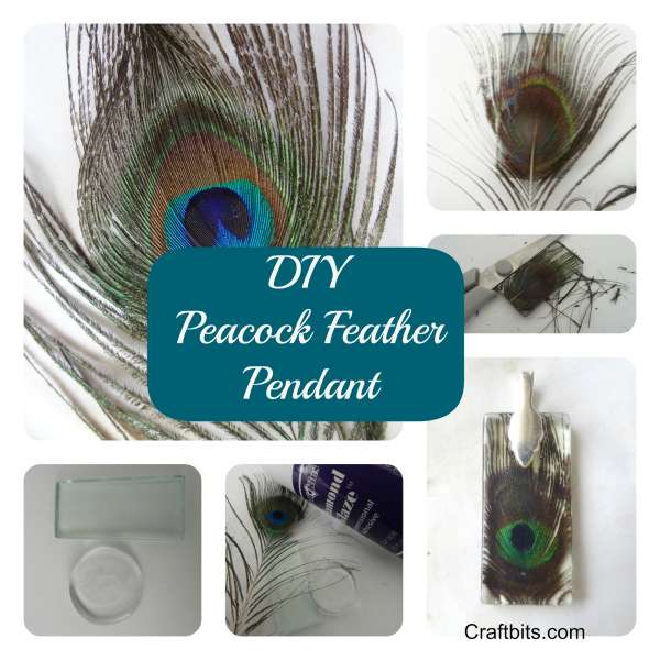 Peacock-feather-pendant