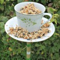 teacup bird feeders (6)