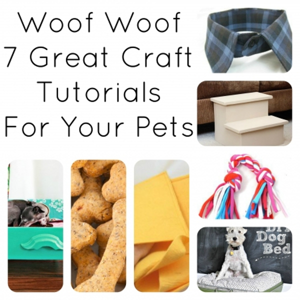pet-dog-DIY-Tutorial