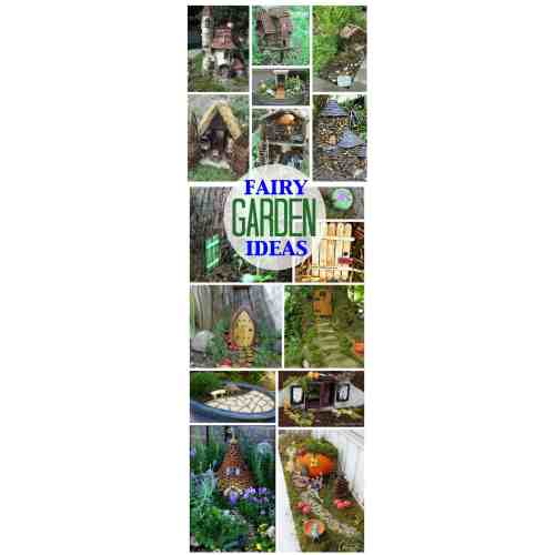 Medium Crop Of Fairy Gardens Kits
