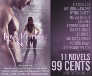 Love Potion No 11 – Interview with Liz Shulte #authorinterview