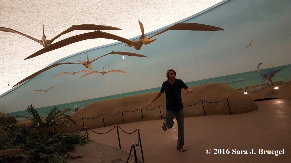 Terrifying pterosaurs Photo by Sara J. Bruegel, 2016