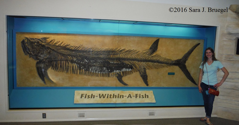 """Fish-Within-A-Fish"" at the Sternberg Museum in Hays, Kansas"