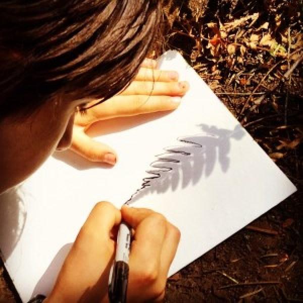 Drawing Shadows