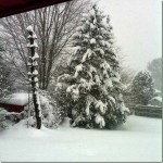 snowpic_thumb.jpg