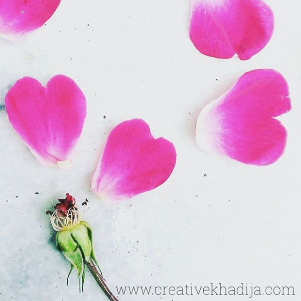valentines day ideas photography
