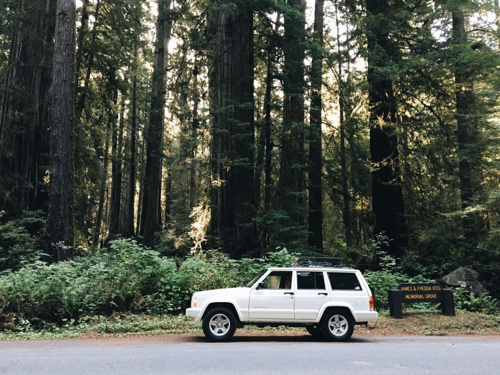 oregon, jeep, roadtrip, redwoods, california, west coast