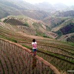 Emma looks wistfully over the Longsheng rice terraces.
