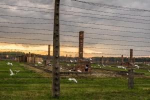 Day 3 Poland Auschwitz-16