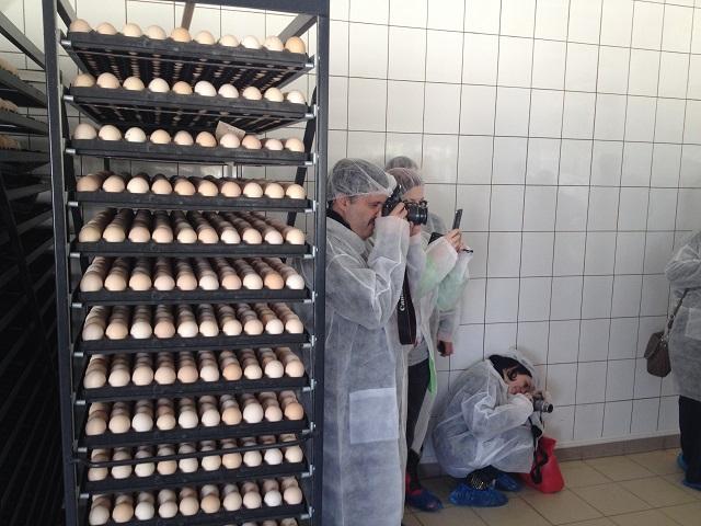 4 alte oua