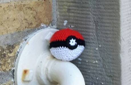 Search For REAL PokeBalls In The Wild