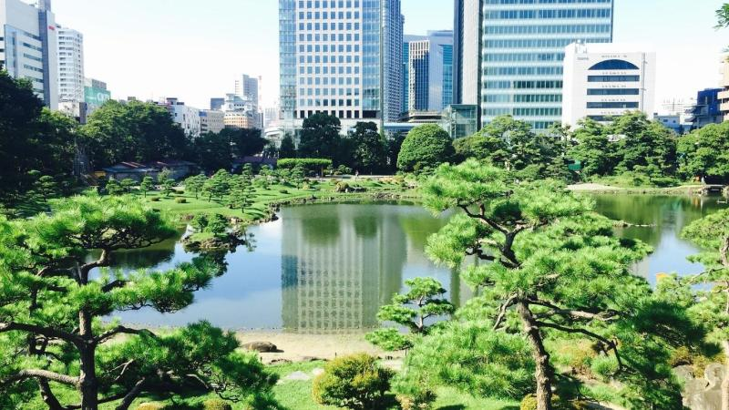 tokyo buildings and pond