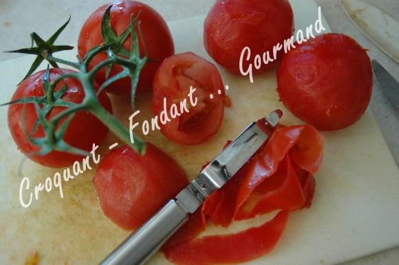 Bohémienne de légumes - DSC_9070_17574