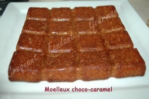 Moelleux choco-caramel DSC_7665_16053