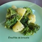 Étouffée de brocolis DSCN1835_31488