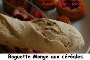 baguette-monge-cereales-index-juillet-2006-028-copie