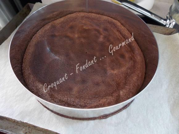 Nid aux 3 chocolats DSCN7336