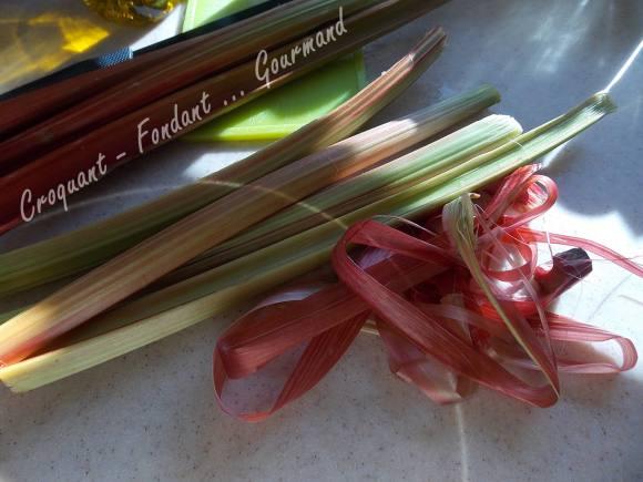 Filet mignon à la rhubarbe DSCN5142