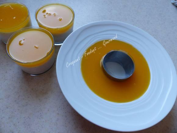 Gourmandise orange-coco P1020212