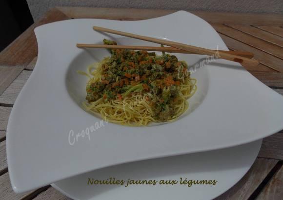 Nouilles jaunes aux légumes DSCN4649