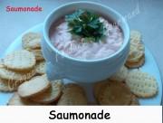 Saumonade Index DSCN1714_21591