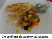 Croustillant de saumon au sésame Index DSCN4860