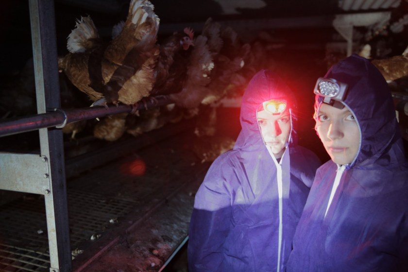 Aktivistenausstattung: Schutzanzug und Kopflampe.