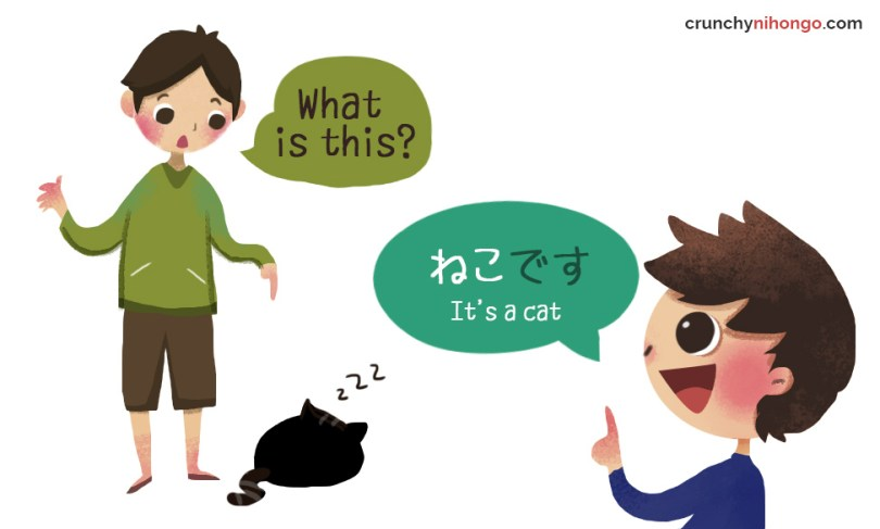 japanese polite sample