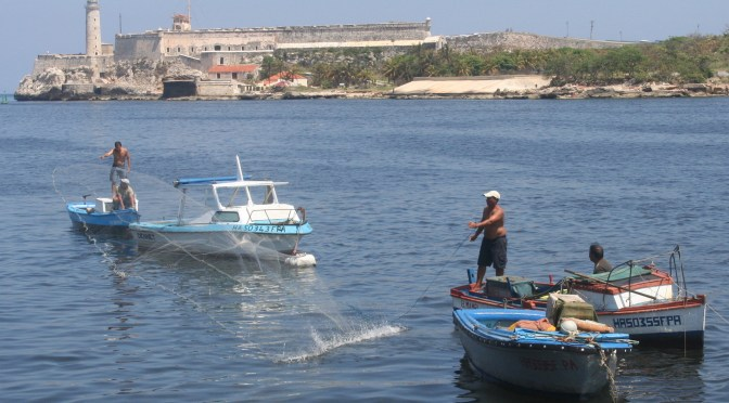 Cuban Fishing, 3-9-15, Havana Net Fisherman By Pete Keogh, Via Creative Commons.