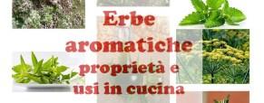 Erbe aromatiche: proprietà e usi in cucina
