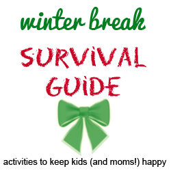 winter break survival guide