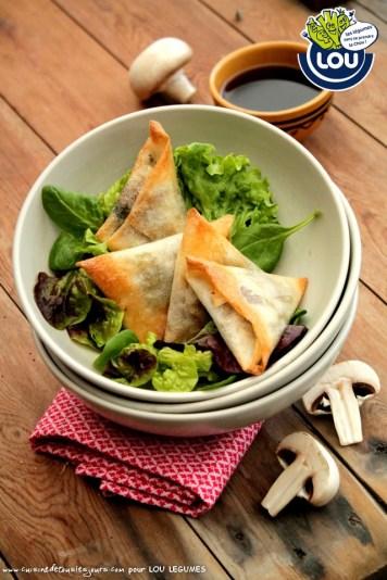 SAMOUSSAS DE BŒUFS CHAMPIGNONS ET CORIANDRE - Cuisine de tous les jours pour Lou Légumes