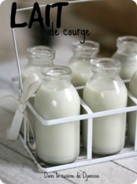 Vegan raw squash milk