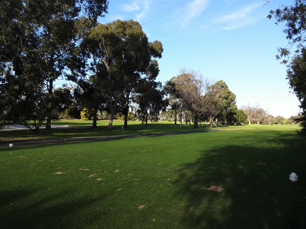 One of many amazing views of Melbourne Royal Park