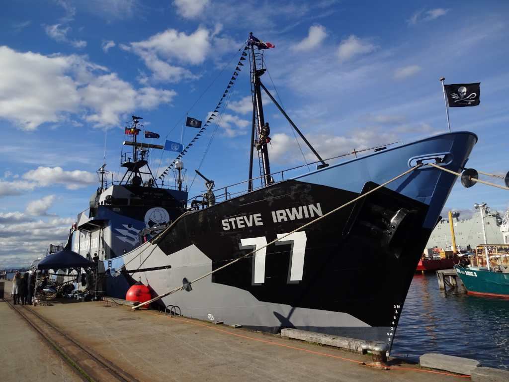 Imagine living on the Steve Irwin, Sea Shepherd flagship, Williamstown, Australia