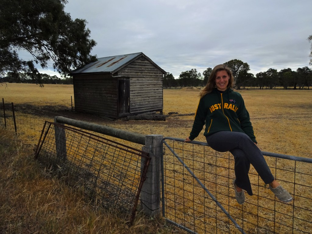 Sitting on a gate in the Australian country side