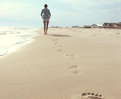 beach-731137_640