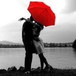 梅雨の時期だからこそ必見!可愛く綺麗に魅せる傘の色